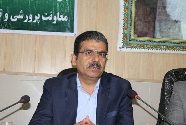 توانمندی های حرفه ای مربیان و معلمان استان بوشهر تقویت می گردد