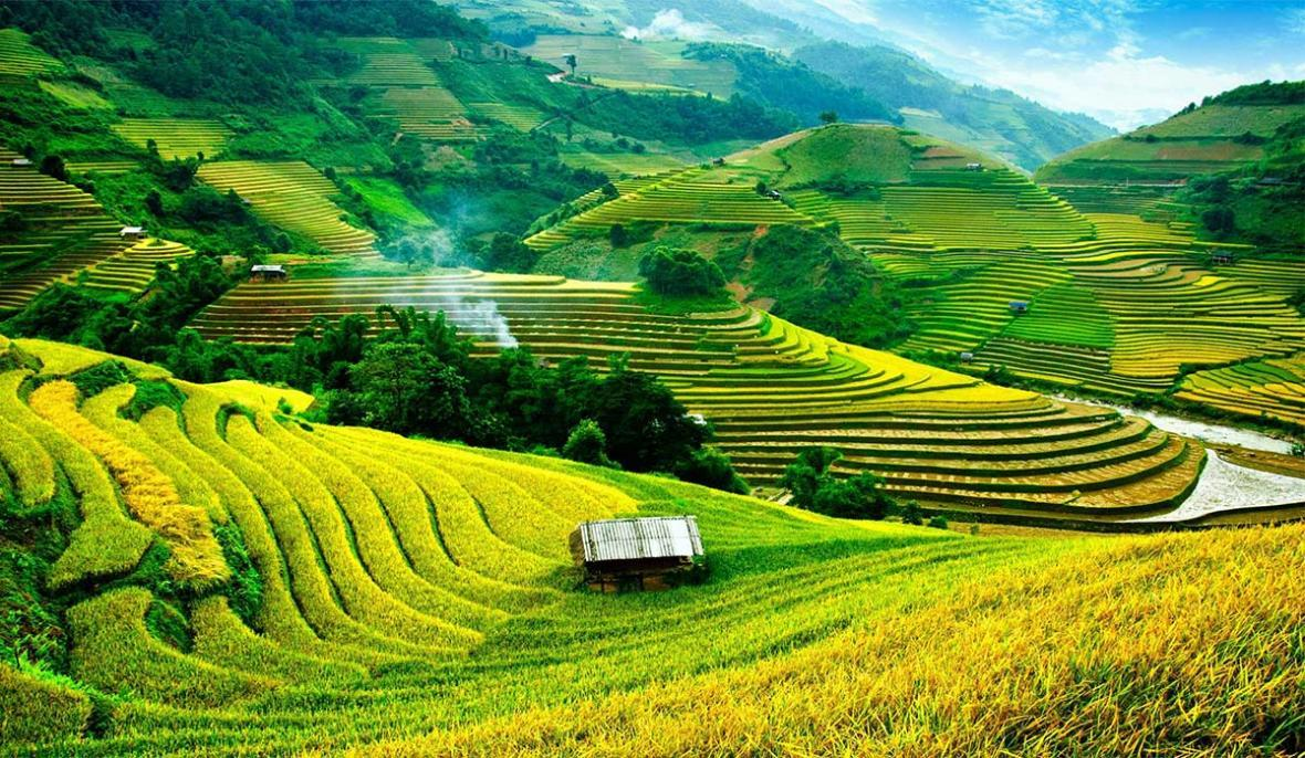 طبیعت سحرانگیز ویتنام