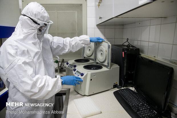 23جهش ویروس کرونا در کشور کشف شد، 4 جهش مختص ایرانیها است