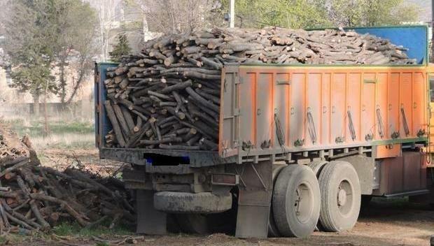 6 تن چوب قاچاق در جوانرود کشف شد