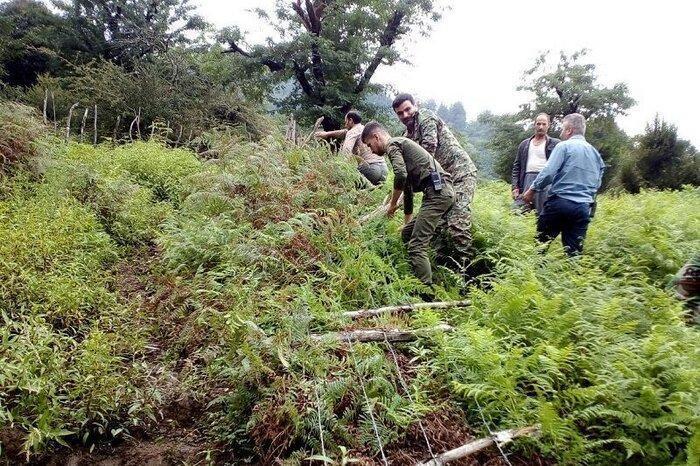 دستگیری سارقان و برطرف تصرف اراضی ملی در آستارا