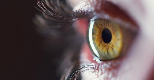 استفاده از سلول های بنیادی جسد برای درمان نابینایی