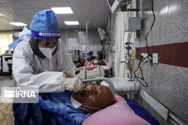 خبرنگاران 176 فرد مبتلا به کرونا شبانه روز گذشته در یزد شناسایی شد