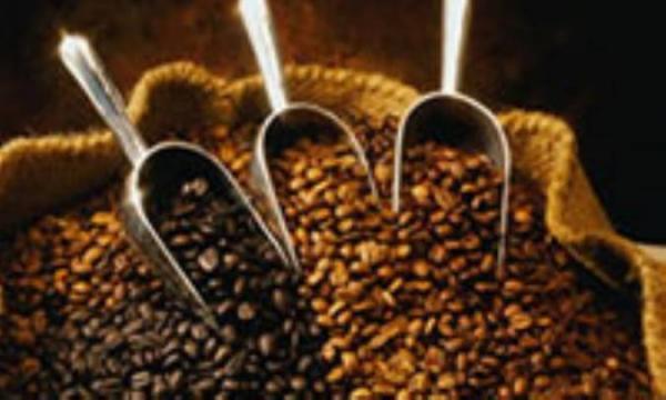 خواص و مزایای درمانی کاکائو